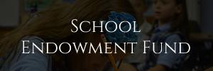 school endowment fund