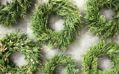 Traditional Holiday Wreath Workshop