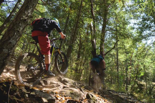 Cowichan BC Mountain Bike