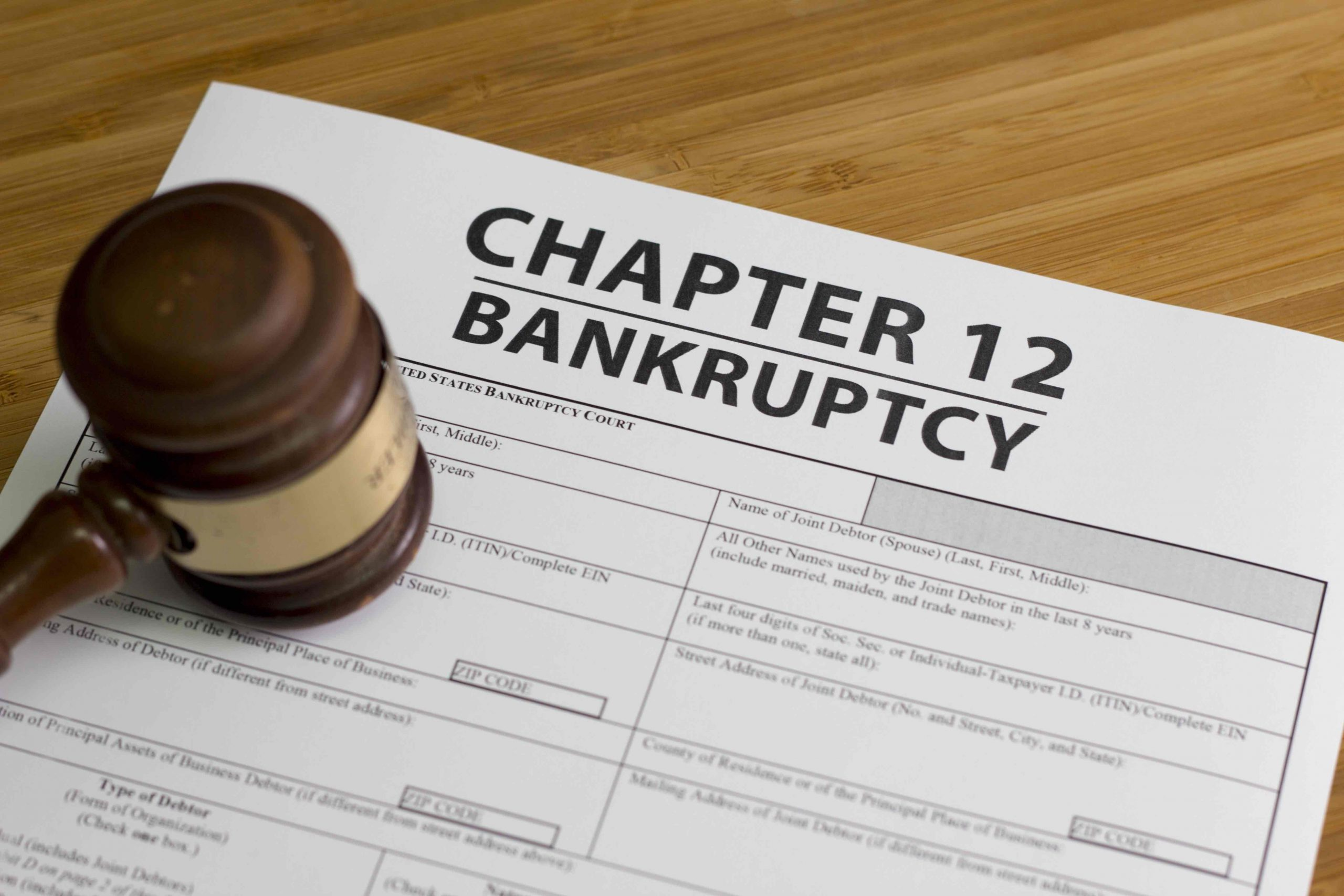 What is Chapter 12 Bankruptcy?