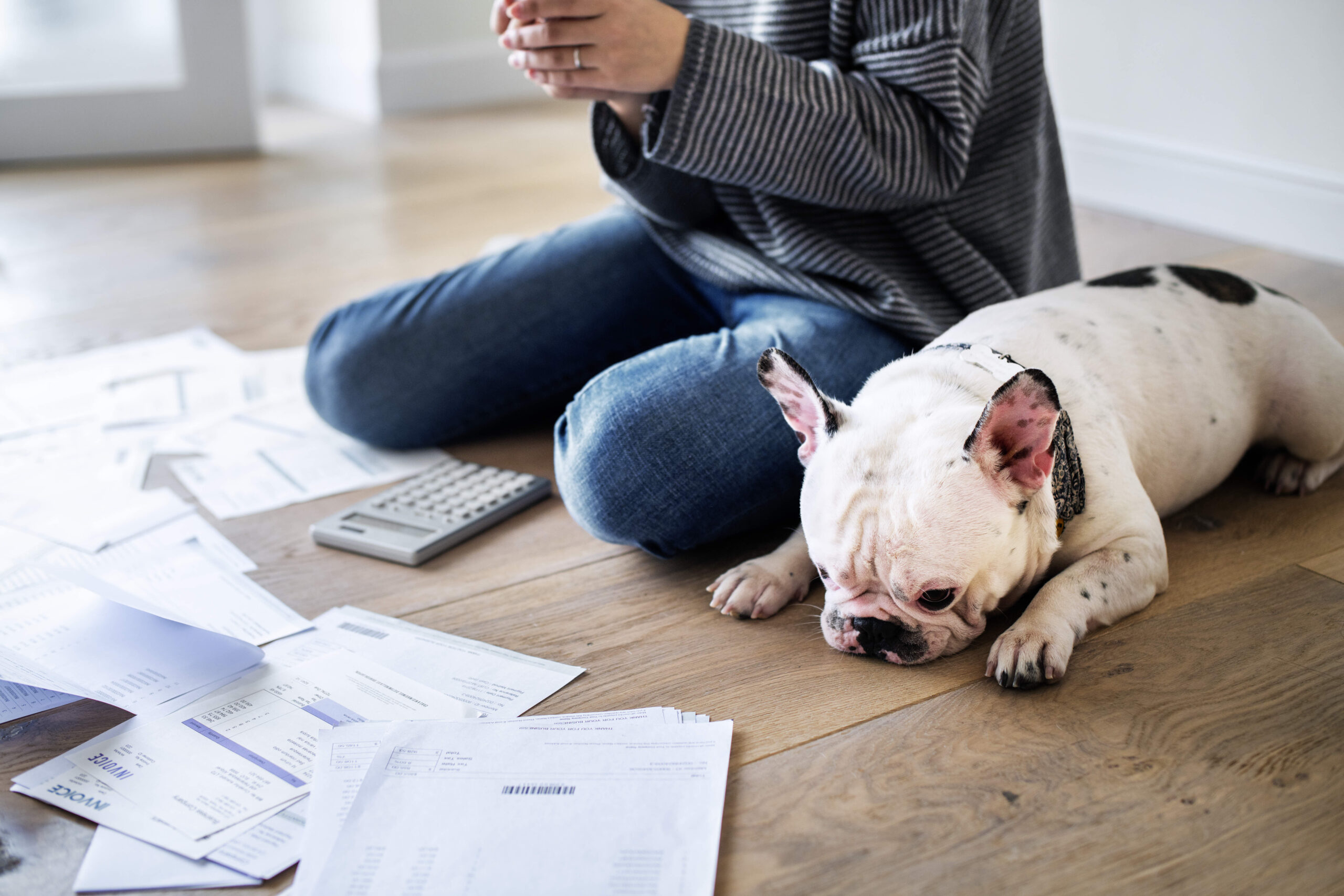 Risks of Working with Debt Settlement Companies