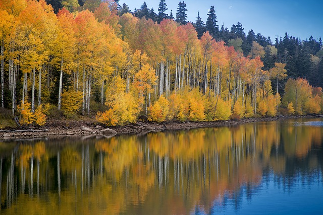 Best Fall Colors On the Western Slope