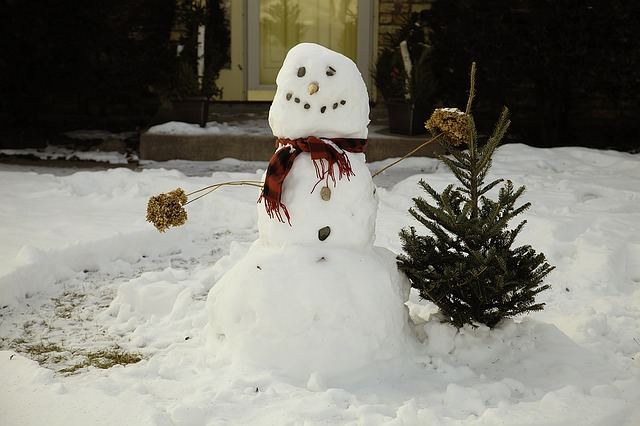 Tips to Build the Perfect Snowman