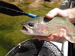 8/18/09 fishing report