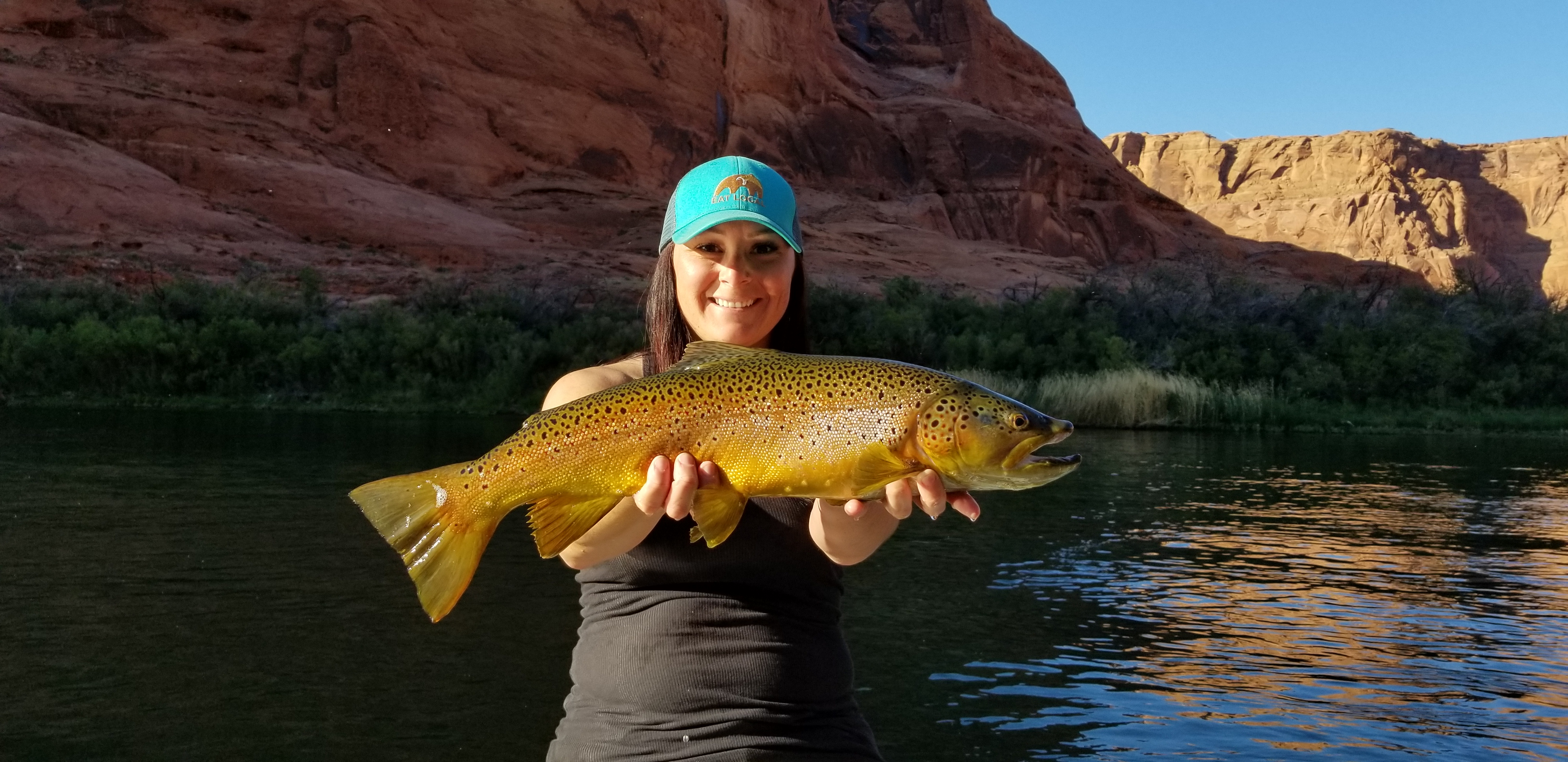 lees ferry brown trout marble canyon outfitters