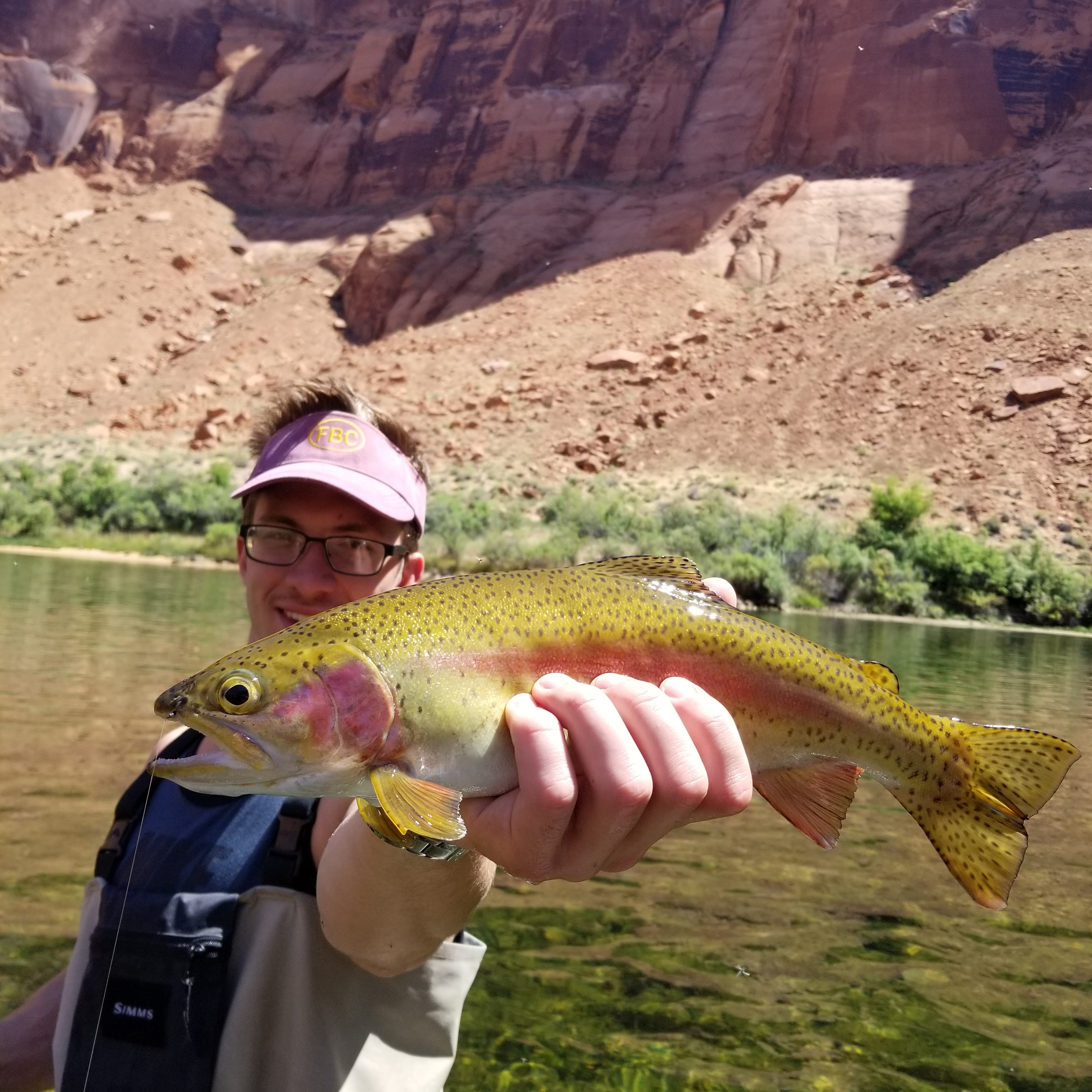 lees ferry fly fishing guided marble canyon trips fish on