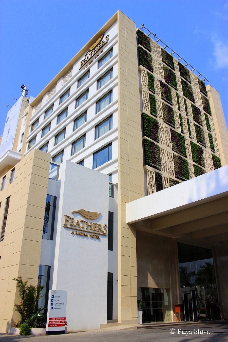 feathers Chennai Hotel review
