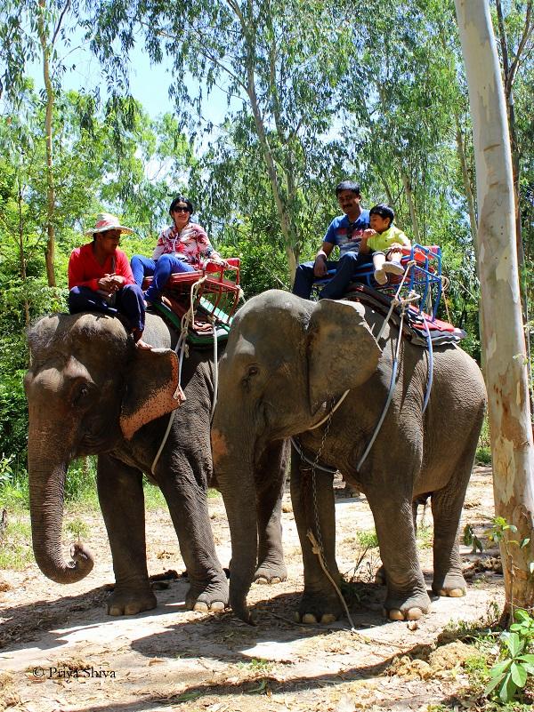 Thapparaya safari Pattaya