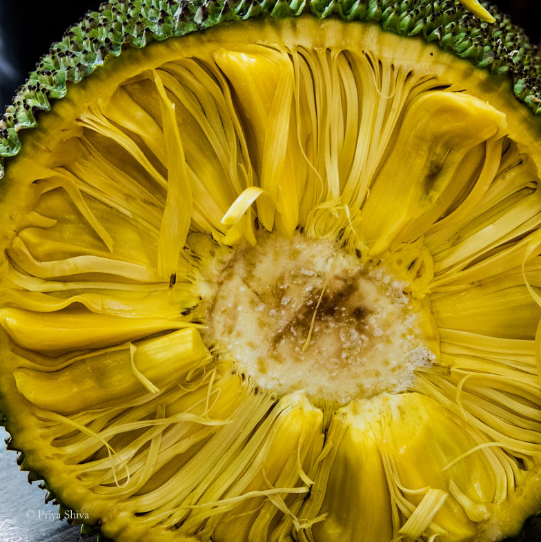 cut jackfruit