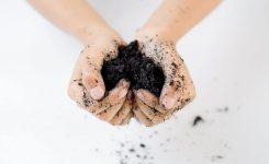 DIY  Organic Potting Soil Mix