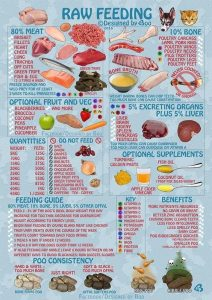 Feeding raw diet
