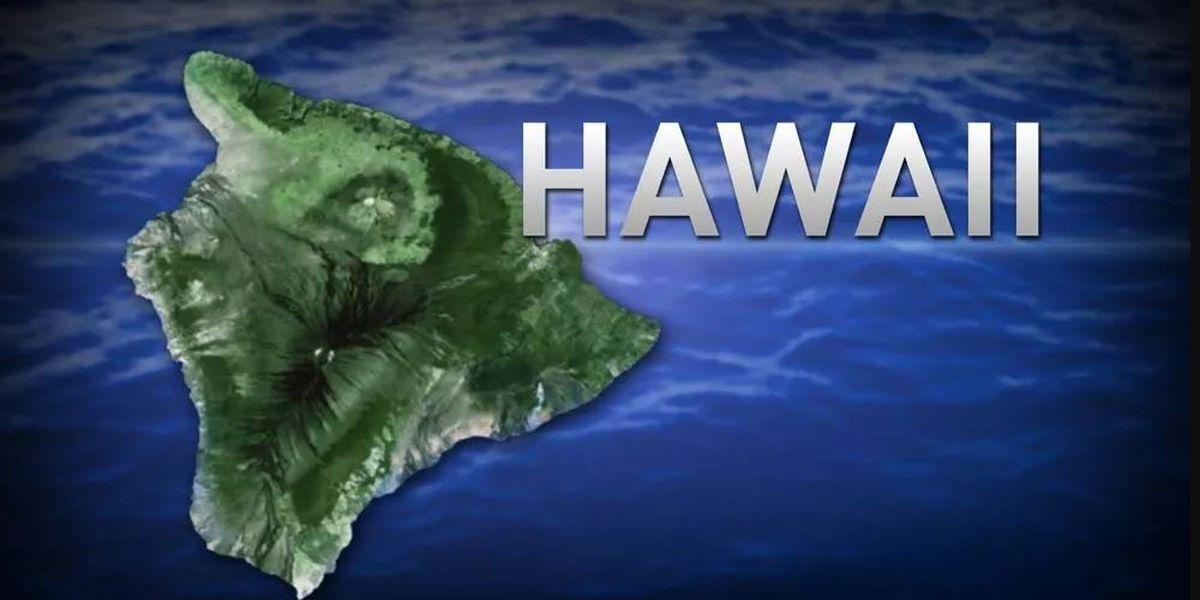 Hawaii | Art & Music