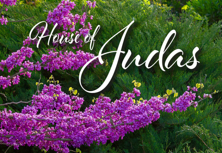 House of Judas