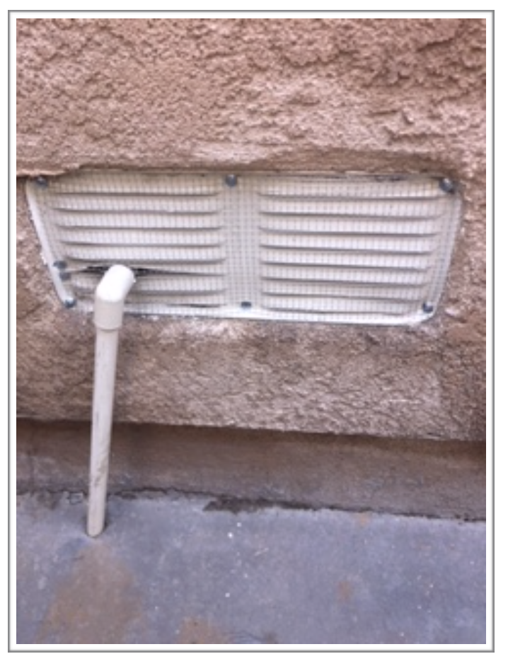 True Heat Solutions - Rodent Proofing
