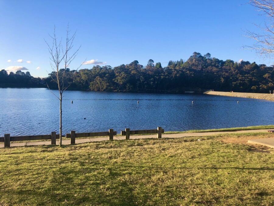 explore wentworth falls eat playground family lake picnic lunch