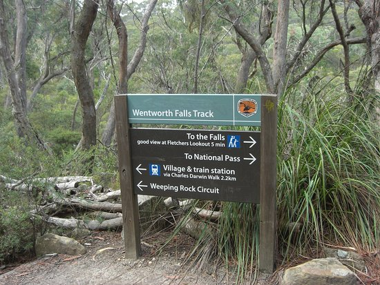 wentworth falls walking track waterfall blue mountains explore family