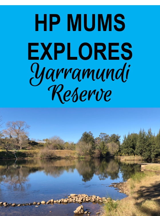 explore yarramudi reserve day out whats on family nature hawkesbury