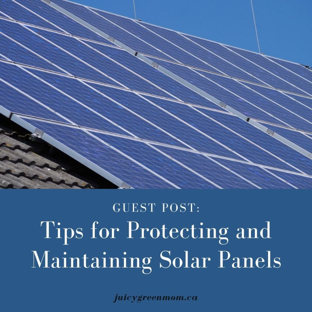 Tips for Protecting and Maintaining Solar Panels juicygreenmom