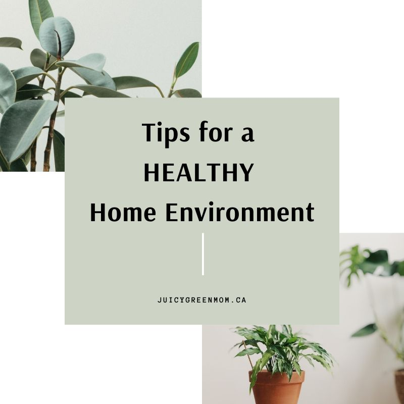 tips for a healthy home environment juicygreenmom