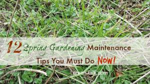 spring-gardening