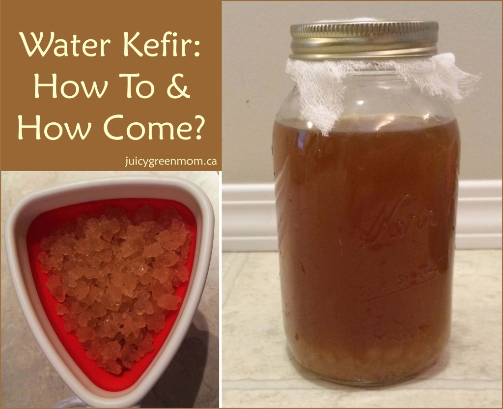 Water Kefir: How To & How Come?