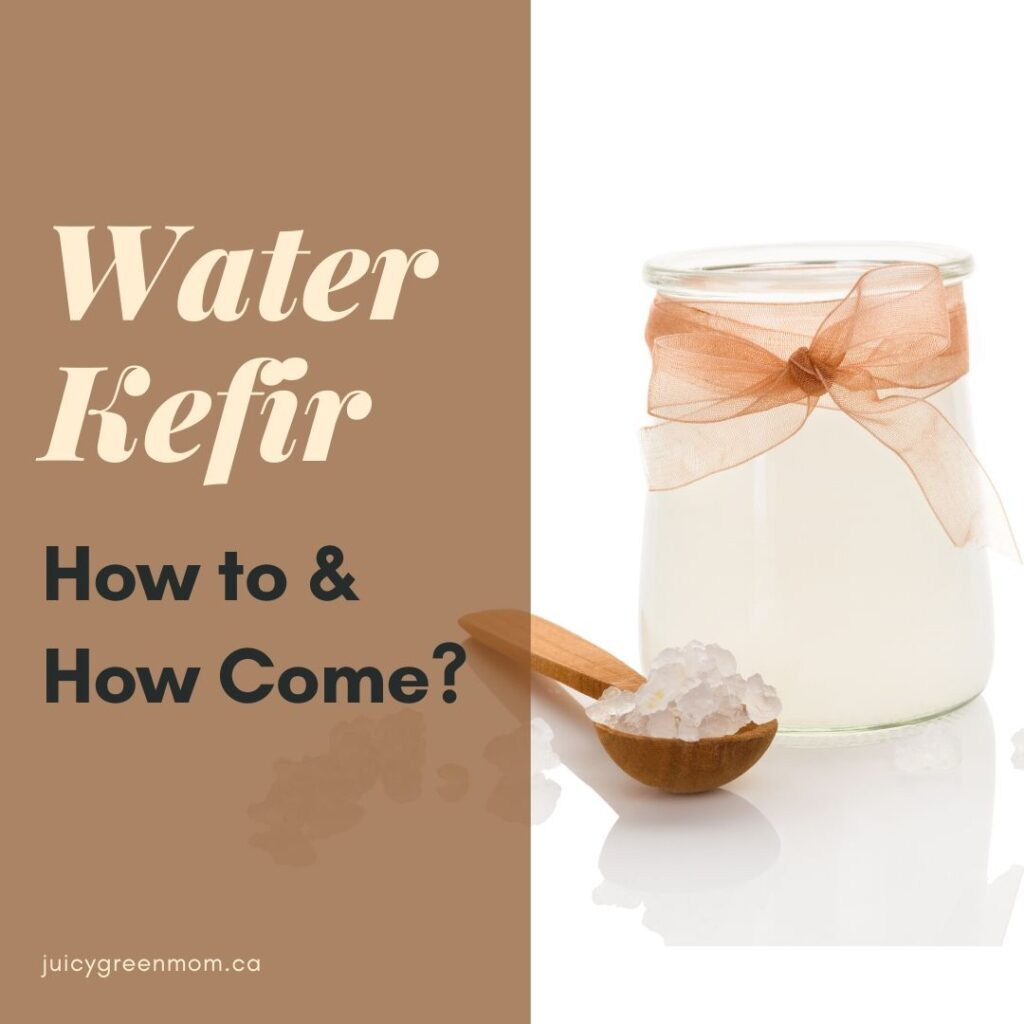 water kefir how to and how come juicygreenmom