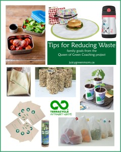 Tips for Reducing Waste from Queen of Green coaching project