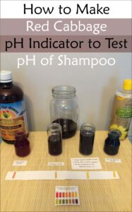 How to Make Red Cabbage pH Indicator