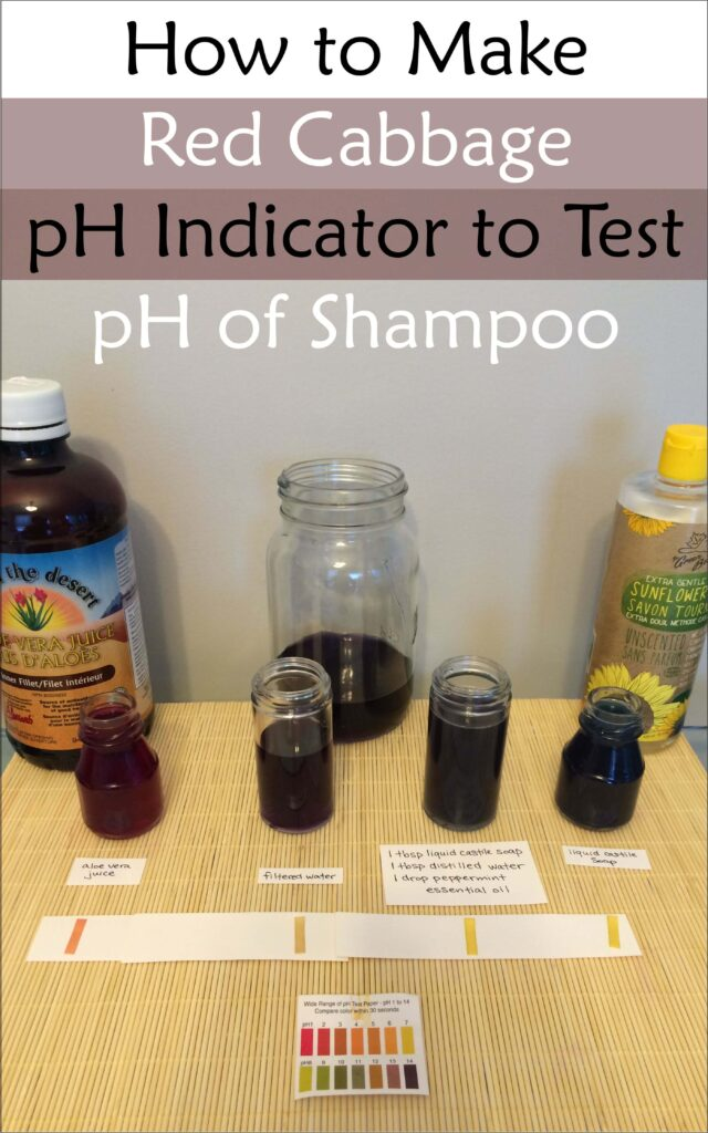 pH-indicator-red-cabbage-juicygreenmom