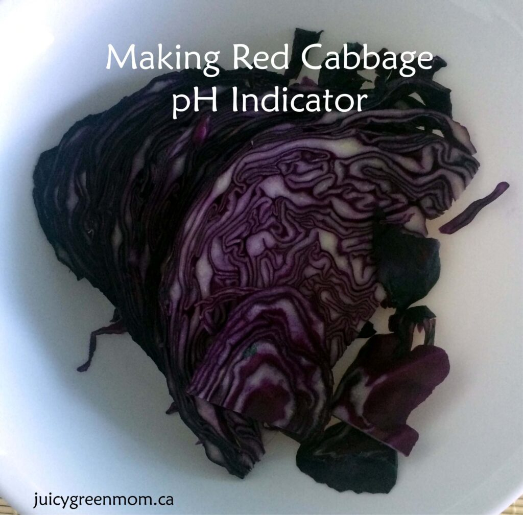 red-cabbage-cut-juicygreenmom