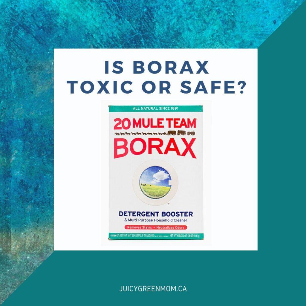 is borax toxic or safe_ juicygreenmom