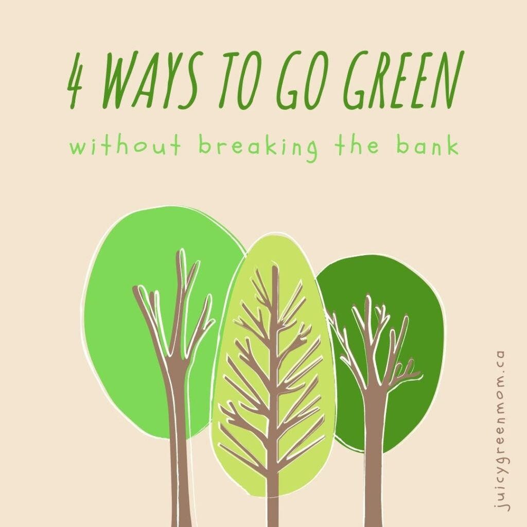 4 Ways to Go Green Without Breaking the Bank juicygreenmom