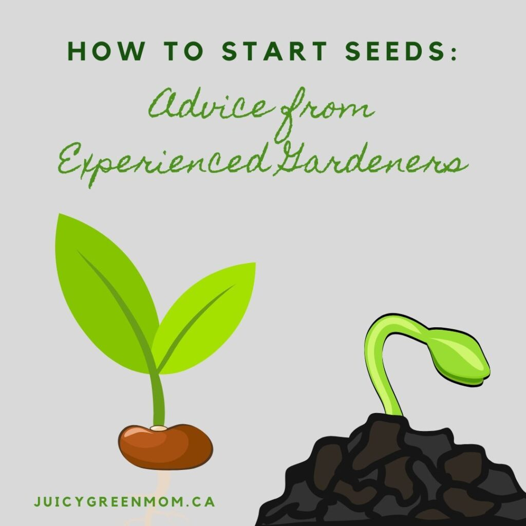 how to start seeds_ advice from experienced gardeners juicygreenmom IG