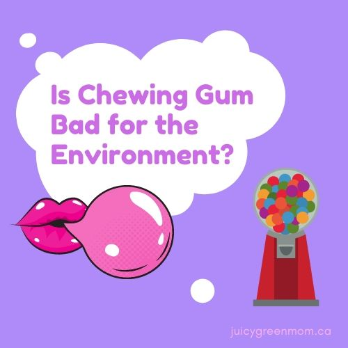 is chewing gum bad for the environment juicygreenmom