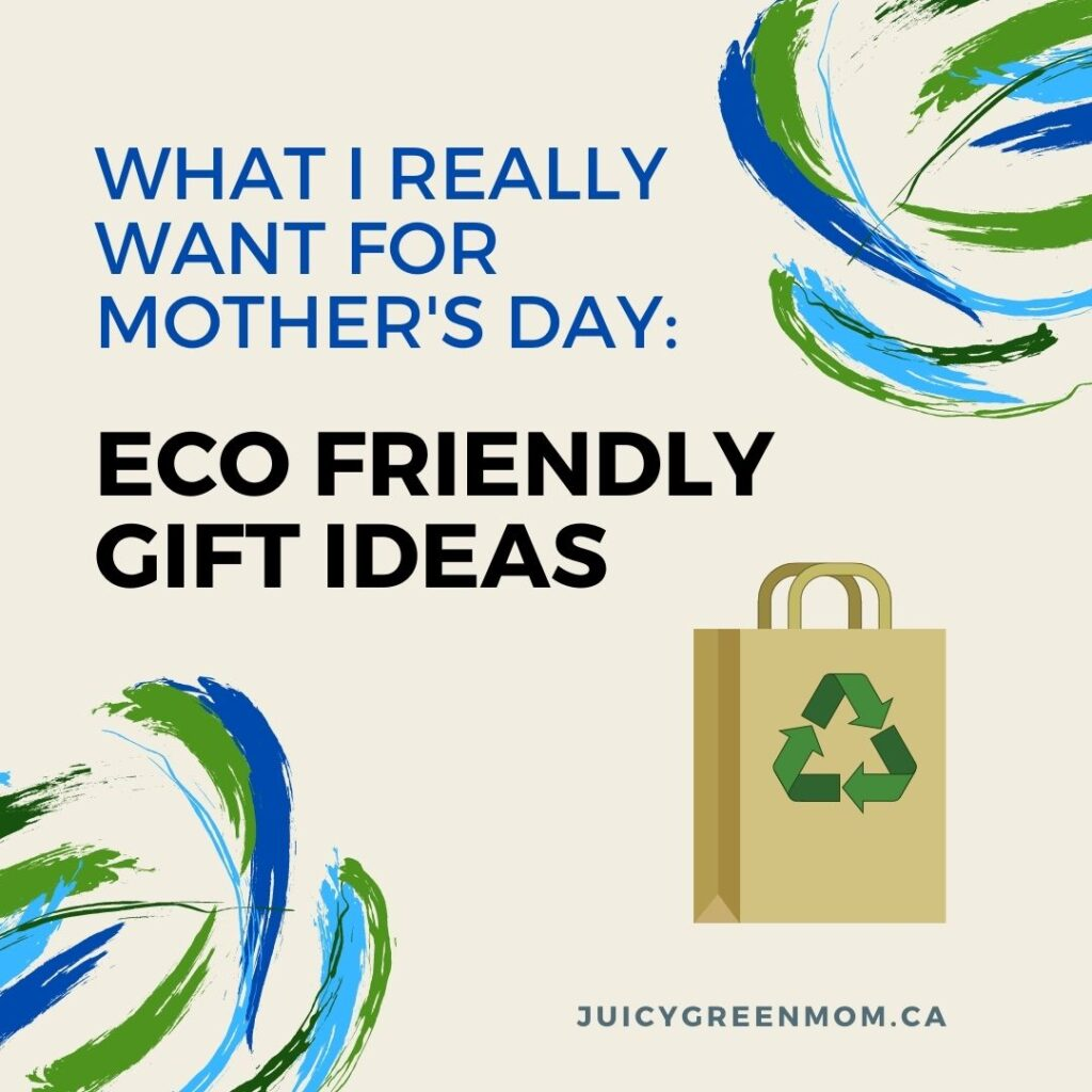 what i really want for mothers day eco friendly gift ideas juicygreenmom