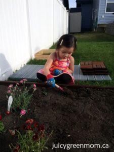 direct-energy-live-brighter-garden