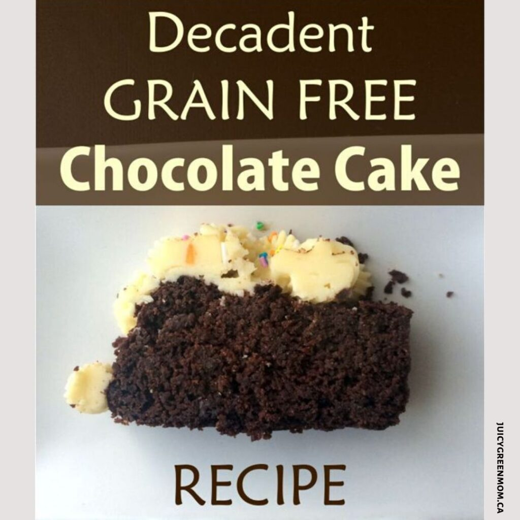 decadent grain free chocolate cake juicygreenmom
