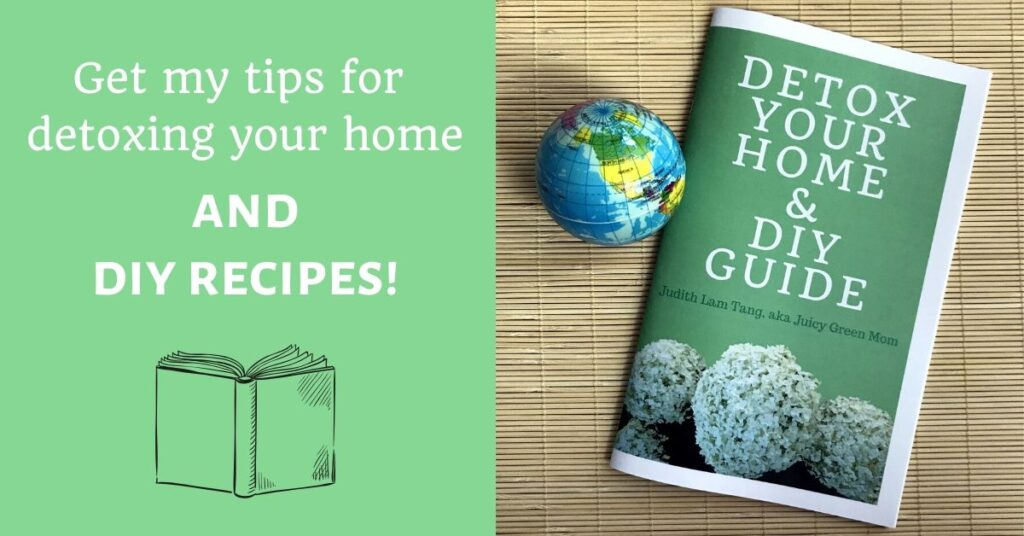 detox your home and diy guide by juicygreenmom featured