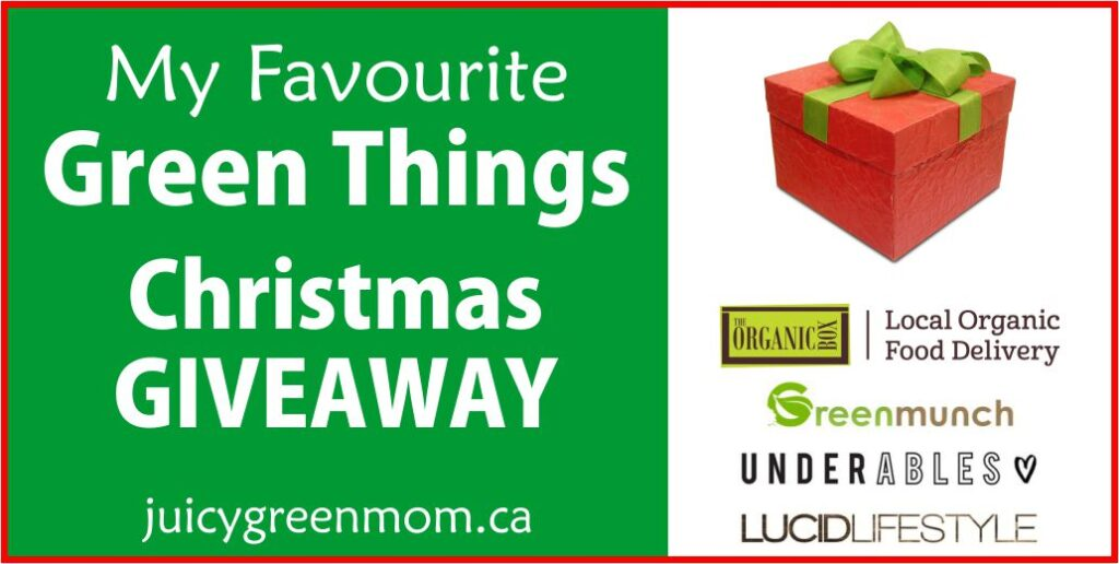 my favourite green things Christmas giveaway juicygreenmom landscape