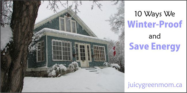 direct-energy-ways-we-winter-proof-and-save-energy-juicygreenmom-landscape