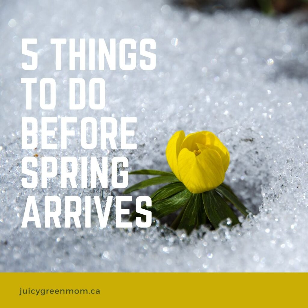 5 things to do before spring arrives juicygreenmom IG