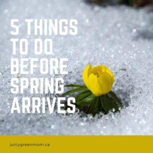 5 things to do before spring arrives juicygreenmom IG