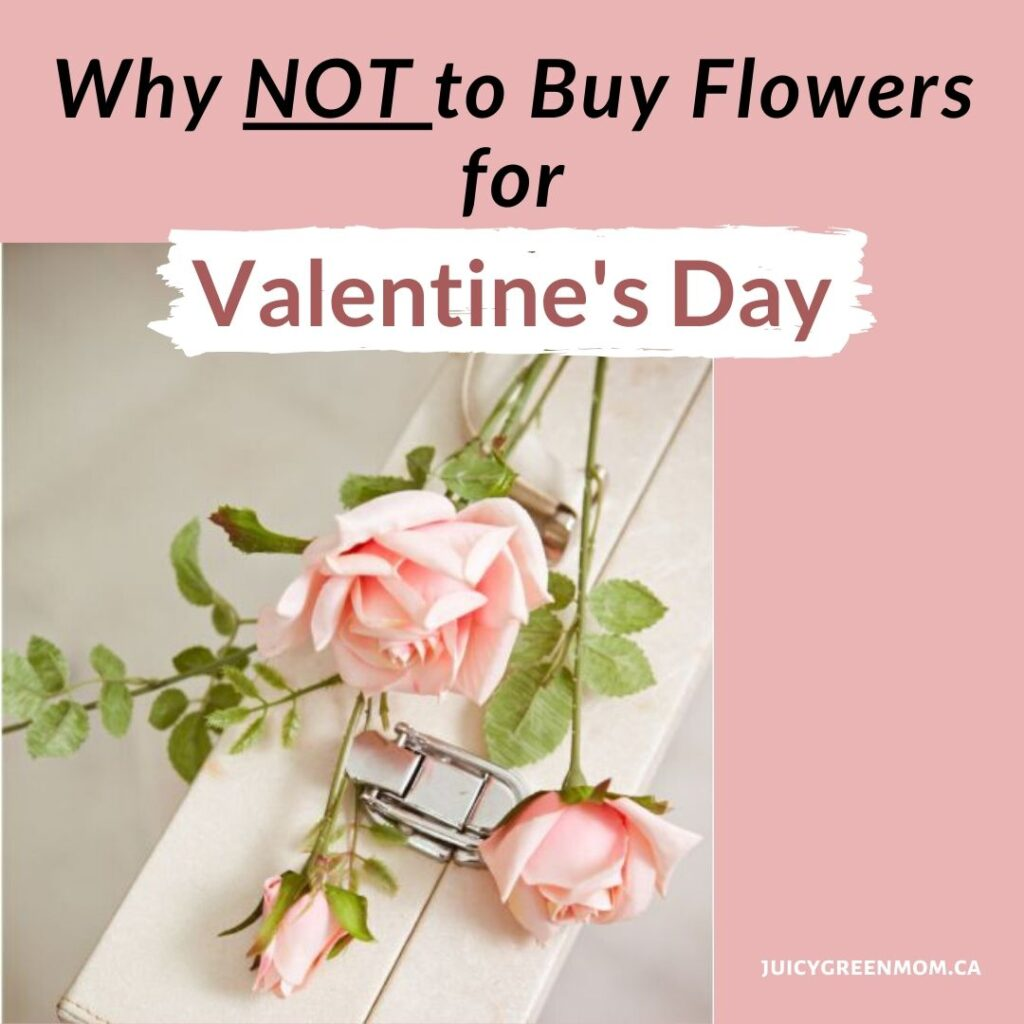 Why NOT to buy flowers for valentine's day juicygreenmom IG