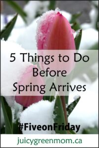 five on friday things to do before spring arrives juicygreenmom