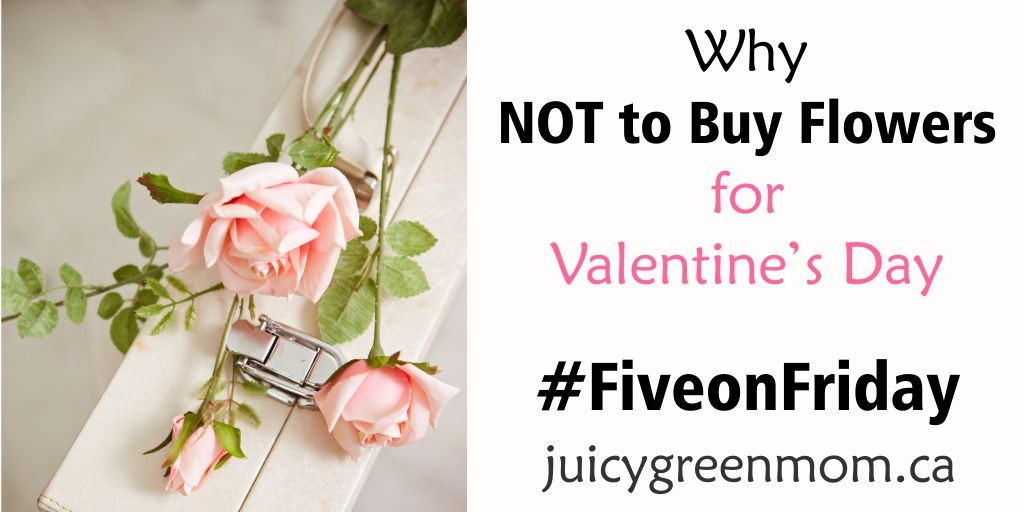 five-on-friday-why not to buy flowers for valentines day juicygreenmom landscape