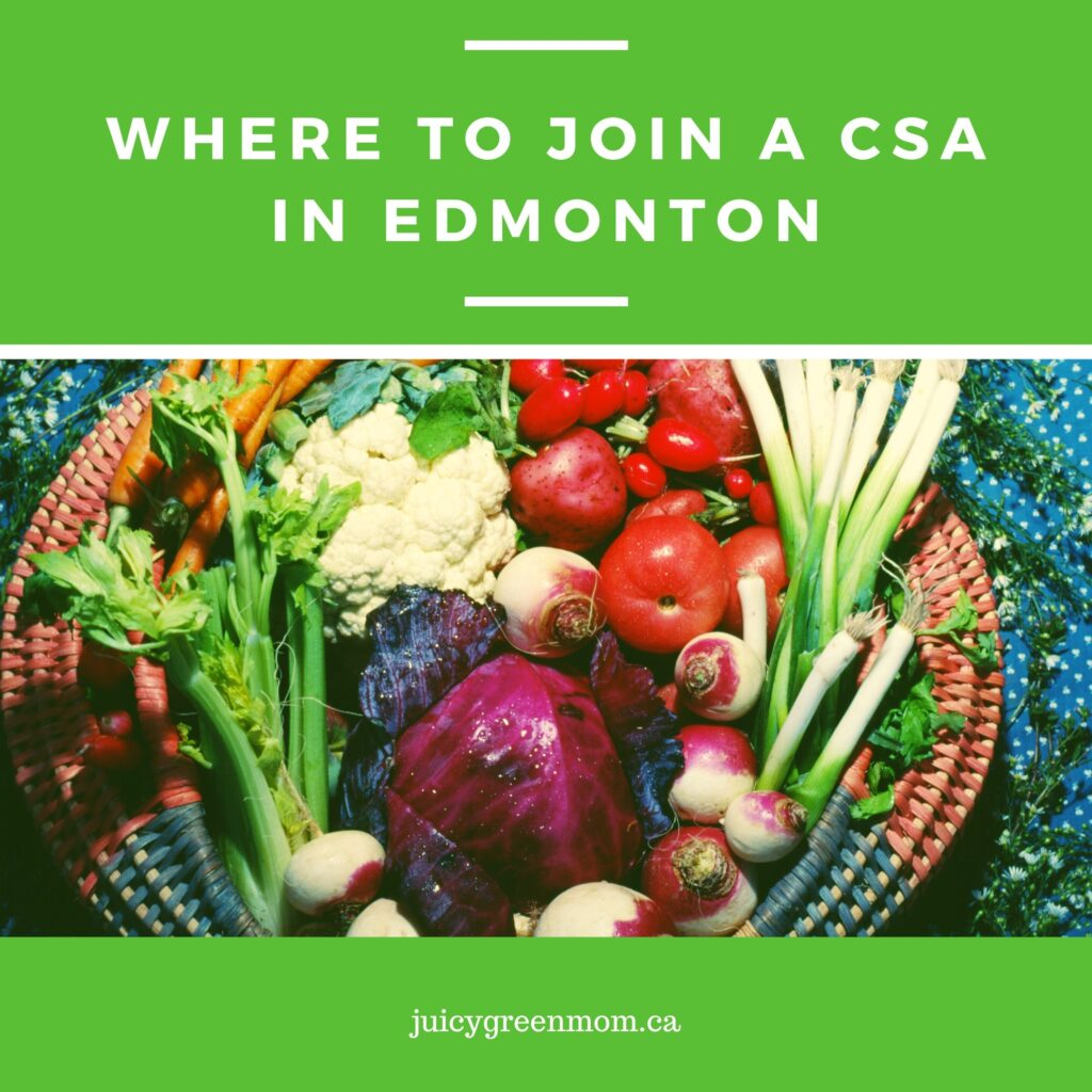 where to join a csa in edmonton juicygreenmom