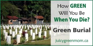 how green will you be when you die green burial juicygreenmom landscape