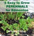 easy to grow perennials for Edmonton juicygreenmom