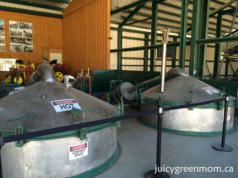distillation steaming Young Living lavender farm in Utah juicygreenmom