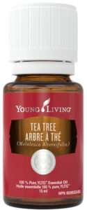 young living tea tree essential oil natural health product